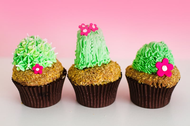 DIY Succulent Cactus Cupcakes Tutorial Cacti Fun Unique Terrarium Two Little Cats Bakery Greenery Green Spring Themed-13