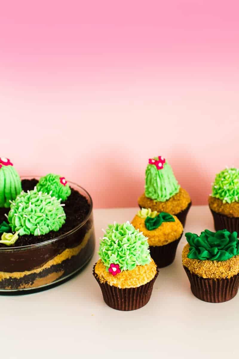 DIY Succulent Cactus Cupcakes Tutorial Cacti Fun Unique Terrarium Two Little Cats Bakery Greenery Green Spring Themed-22