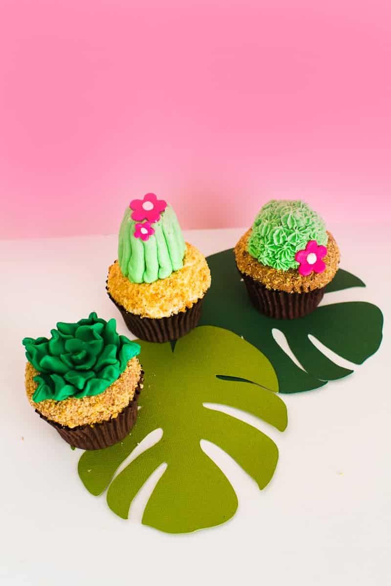 DIY Succulent Cactus Cupcakes Tutorial Cacti Fun Unique Terrarium Two Little Cats Bakery Greenery Green Spring Themed-24