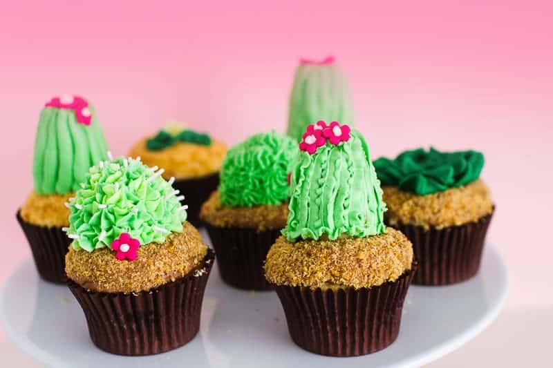 DIY Succulent Cactus Cupcakes Tutorial Cacti Fun Unique Terrarium Two Little Cats Bakery Greenery Green Spring Themed-3