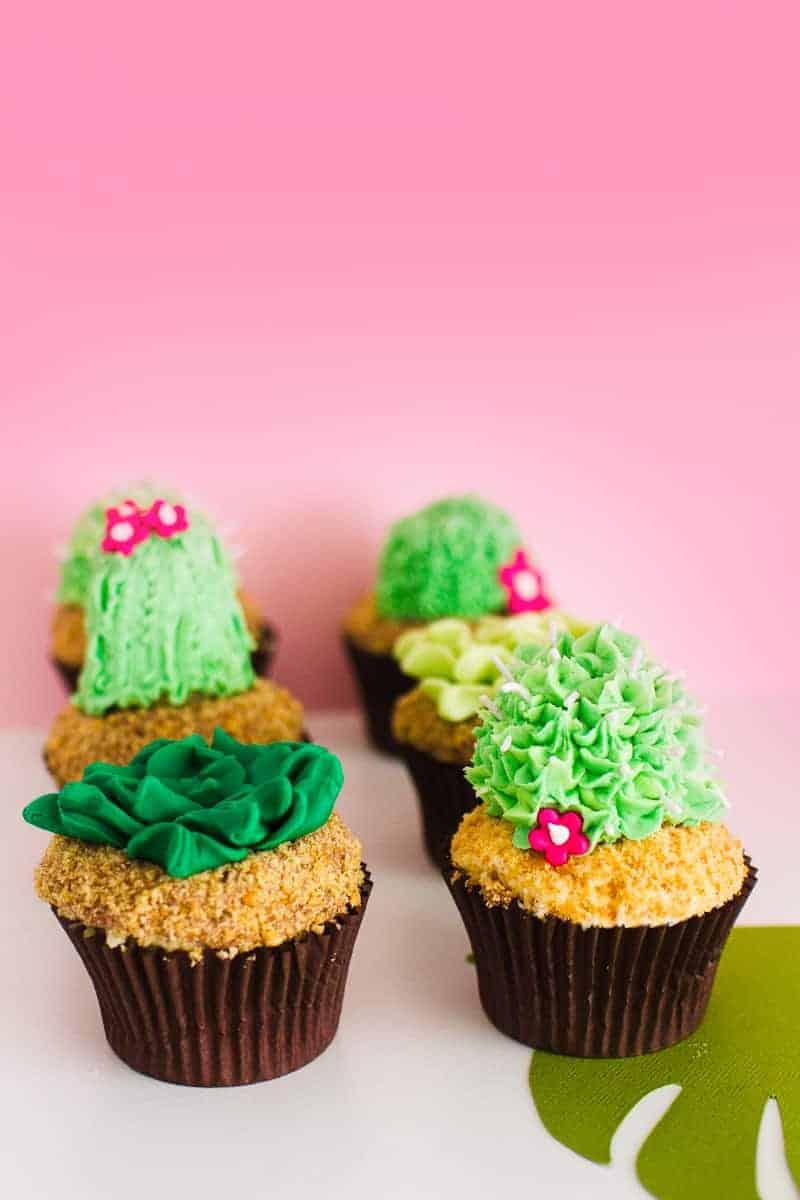 DIY Succulent Cactus Cupcakes Tutorial Cacti Fun Unique Terrarium Two Little Cats Bakery Greenery Green Spring Themed-7