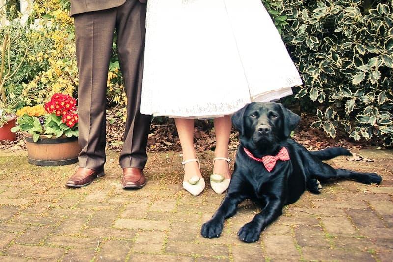 TOP-10-WEDDING-PHOTOGRAPHY-QUESTIONS-DARIA-NOVA-PHOTOGRAPHY-4 TOP 10 WEDDING PHOTOGRAPHY QUESTIONS ANSWERED