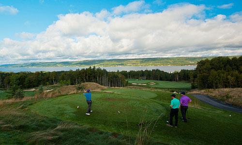 image of golfers
