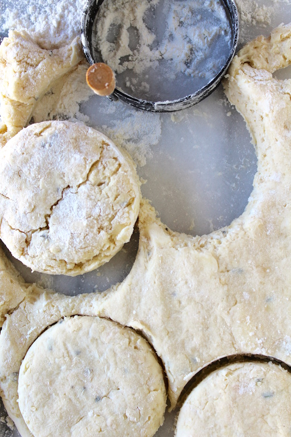 chicken fat biscuit dough cut 1