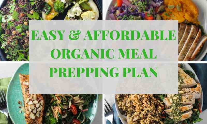 Green chef organic meal planning and delivery service