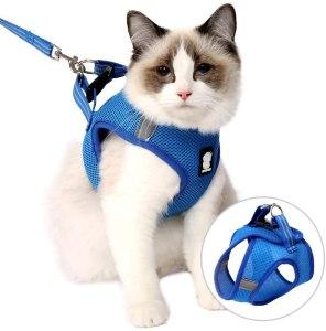 Evel Cat Outdoor Walking Harness Set
