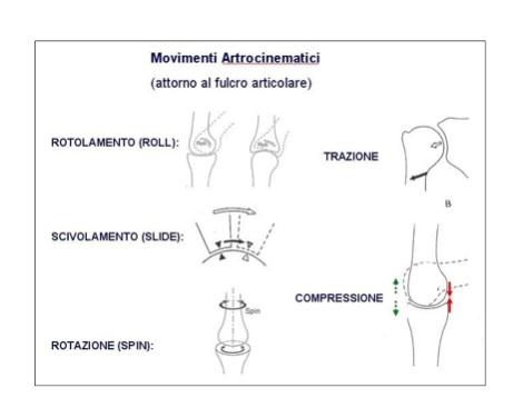 movimenti_artrocinematici