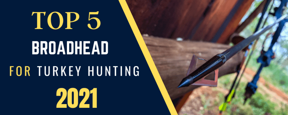 best broadhead for turkey hunting with a crossbow