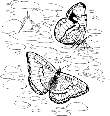 nature-coloring-pages-for-adults
