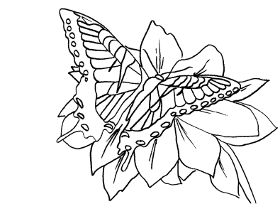 printable-coloring-pages-for-adults