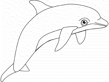 coloring-pages-whales-dolphins