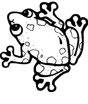 frog-coloring-pages-online