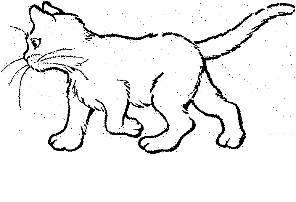 Print & Download - The Benefit of Cat Coloring Pages