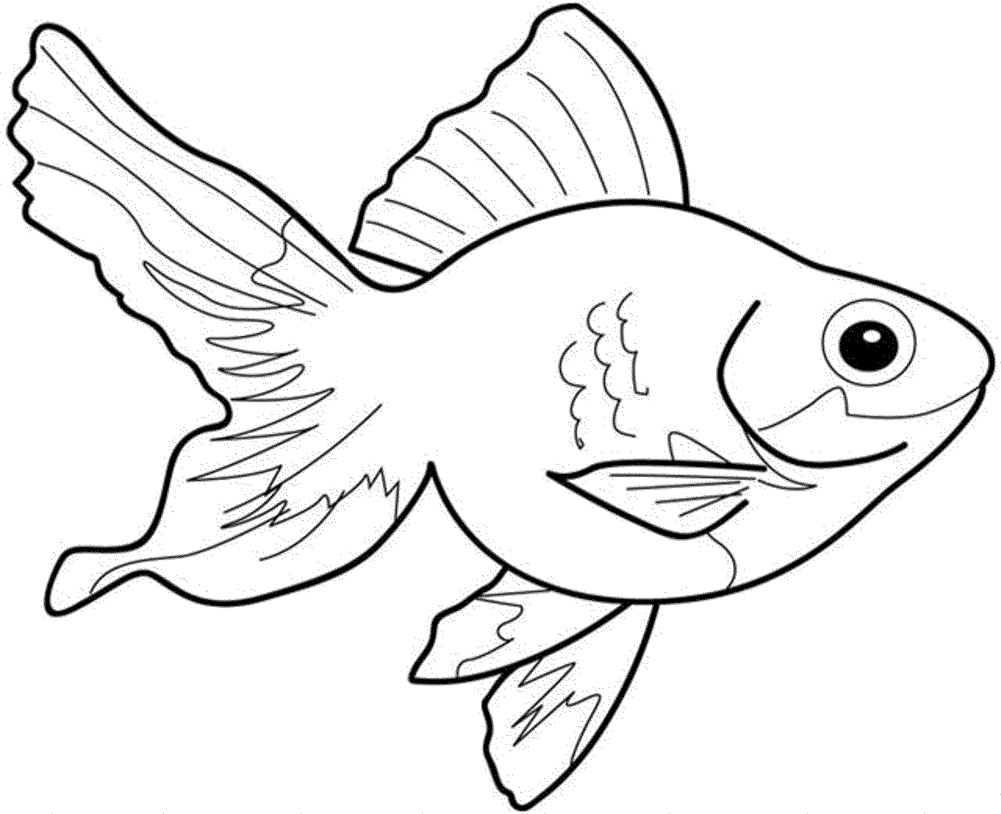Bass Fish Coloring Pages Bestappsforkids