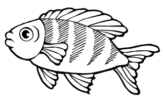 color-pages-of-fish