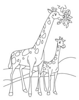 coloring-page-giraffe