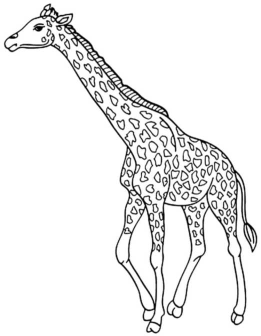 cute-giraffe-coloring-pages