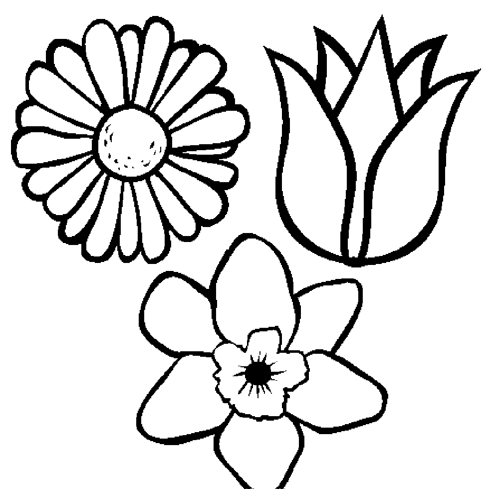 Print & Download - Some Common Variations of the Flower Coloring Pages