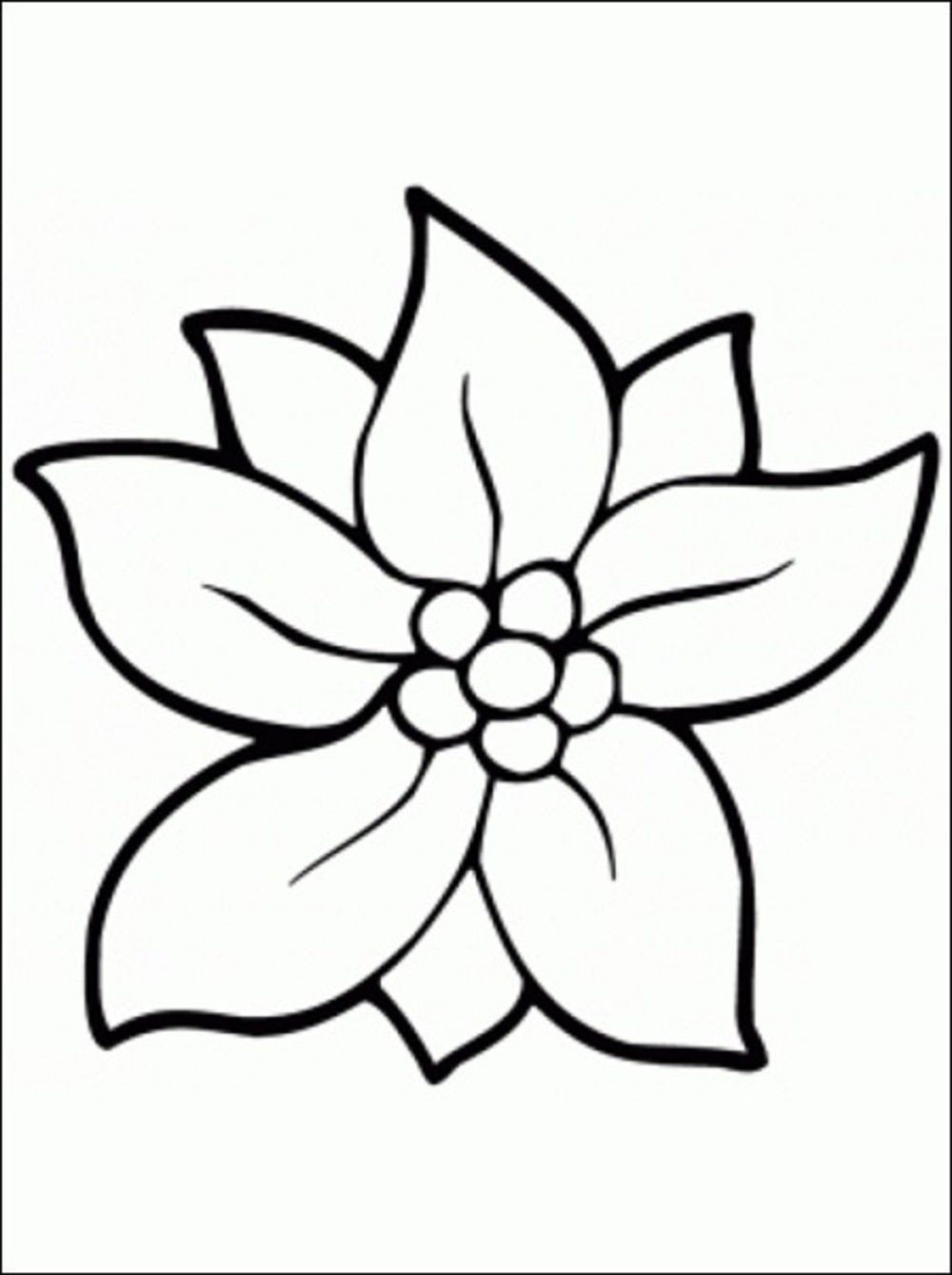 Print & Download - Some Common Variations of the Flower ...   free printable coloring sheets flowers
