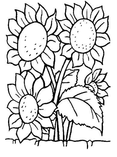flower-coloring-pages-to-print
