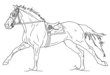 free-coloring-pages-of-horses