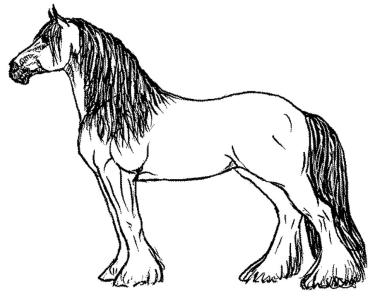 horse-coloring-book-pages