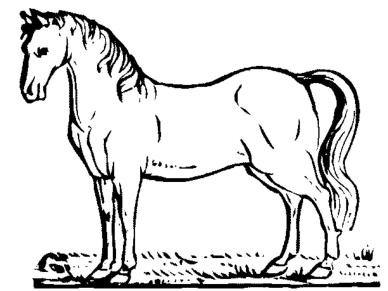 horse-coloring-pages-printable