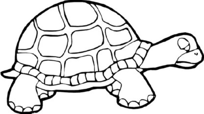old-turtle-coloring-pages-to-print