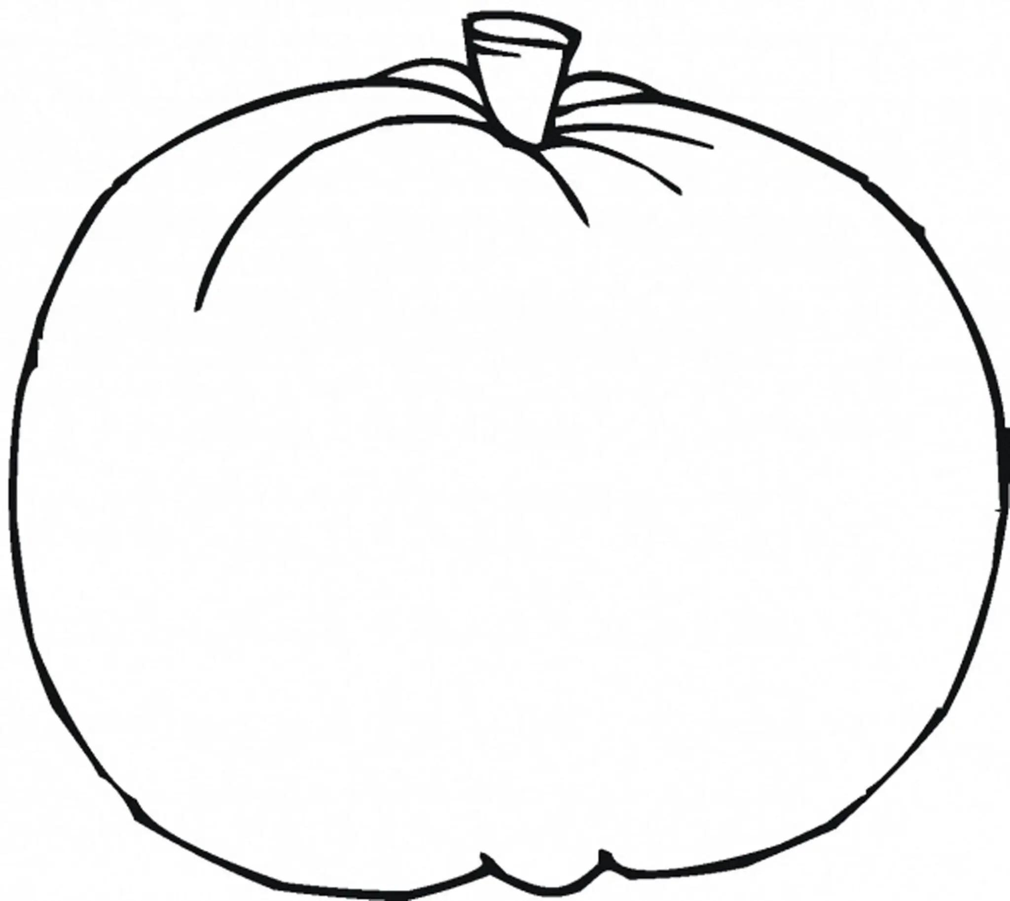 Preschool Worksheet Pumpkin Template