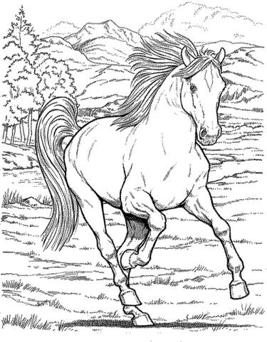 wild-horse-coloring-pages