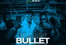 AUDIO + VIDEO: Bash Neh Pha Ft BOC Madaki - Bullets