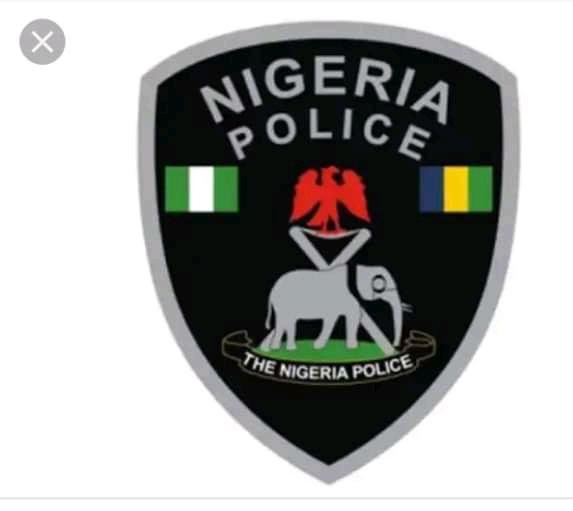 Nigerian system of policing