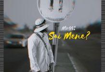 Mr 442 - Sai Mene Mp3 Download