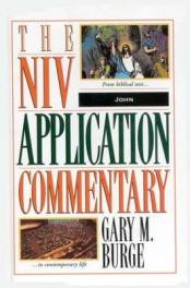 john bible commentary burge cover