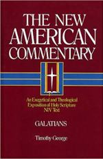 new american commentary series