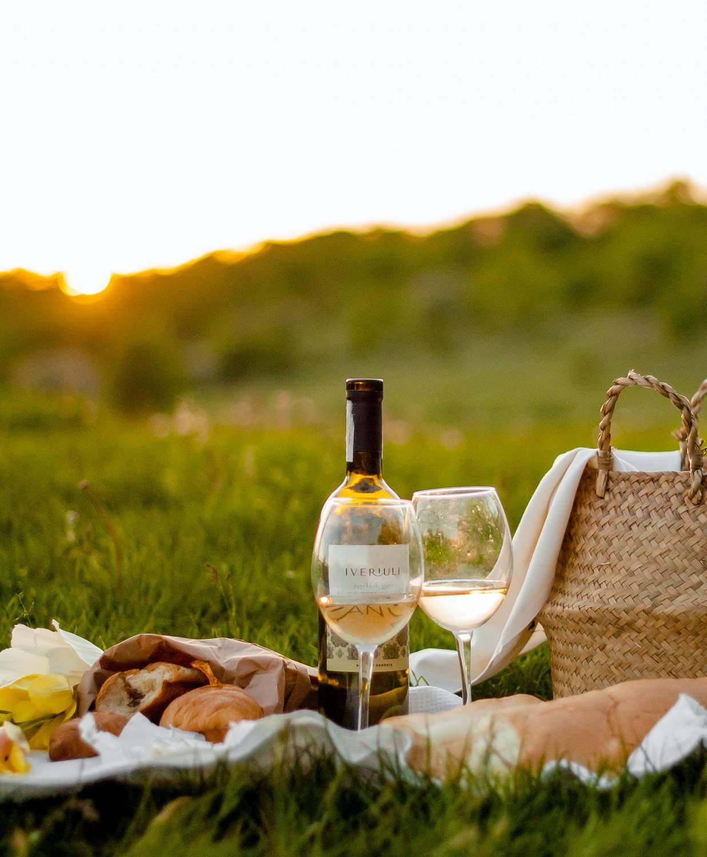 picnic op een grasveld