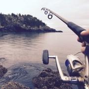 Vishengel met uitzicht