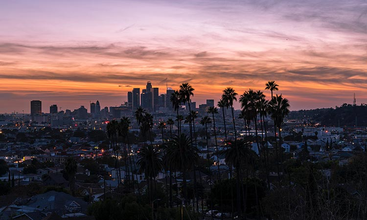 How-to-Start-a-Business-in-Los-Angeles