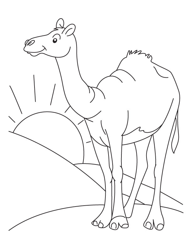free desert coloring pages for kids cooloring com
