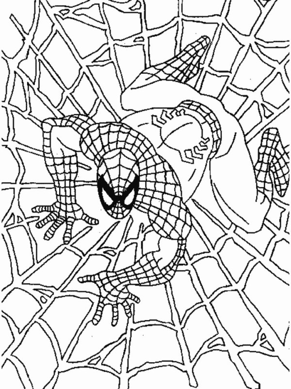 coloring pages of spiderman # 4