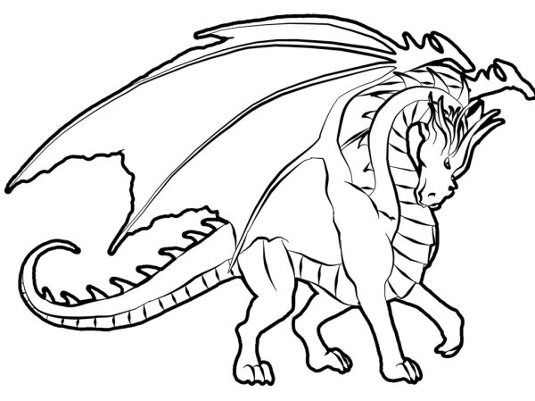 coloring pages dragon # 63