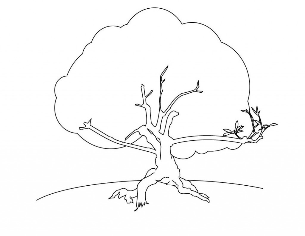 Printable Tree Without Leaves Coloring Page Sketch