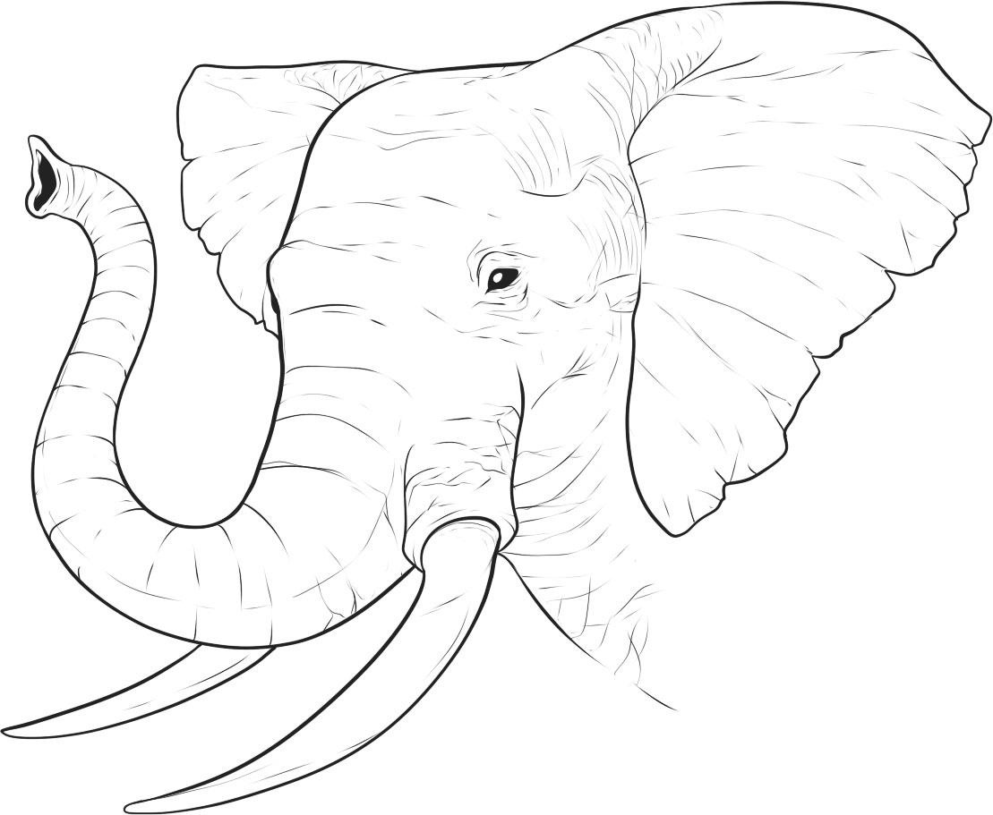 Cartoon Elephant Coloring Pages Coloring Coloring Pages