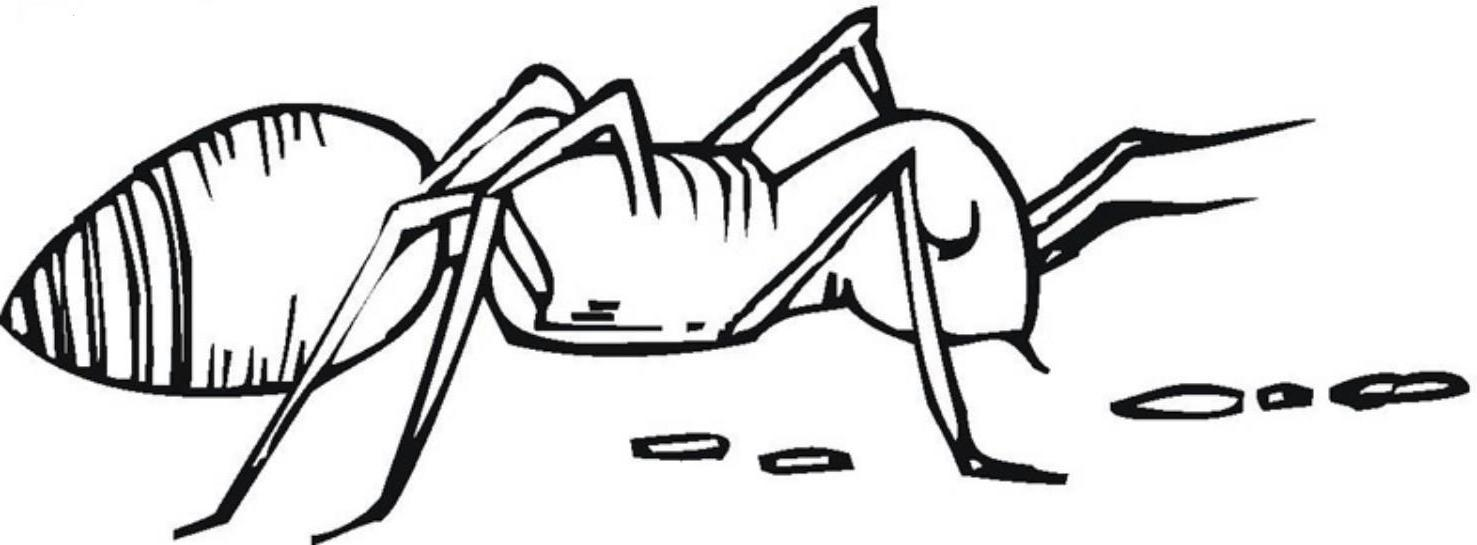 - Ant Coloring Pages For Kids Az Coloring Pages. Hill Or Water