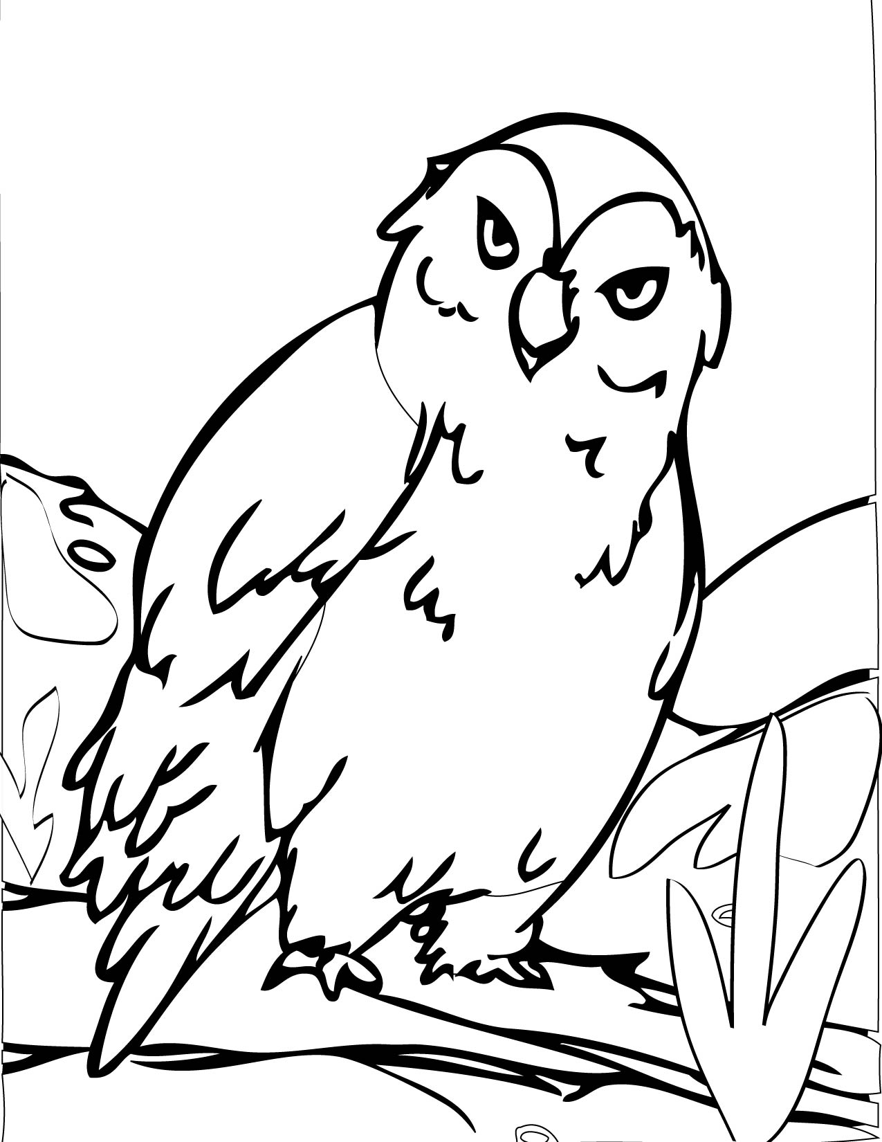 hard coloring pages of cute owls images amp pictures becuo