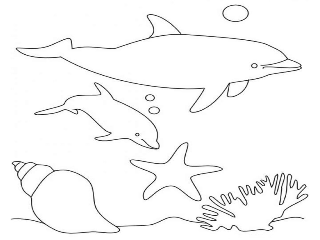 - Dolphin Coloring Pages For Kids. Jumping With Ball. Free Printable