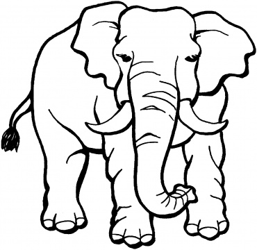 coloring pages of elephants # 1