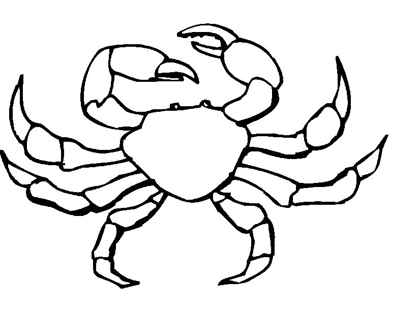 go back gt gallery for gt blue crab coloring pages
