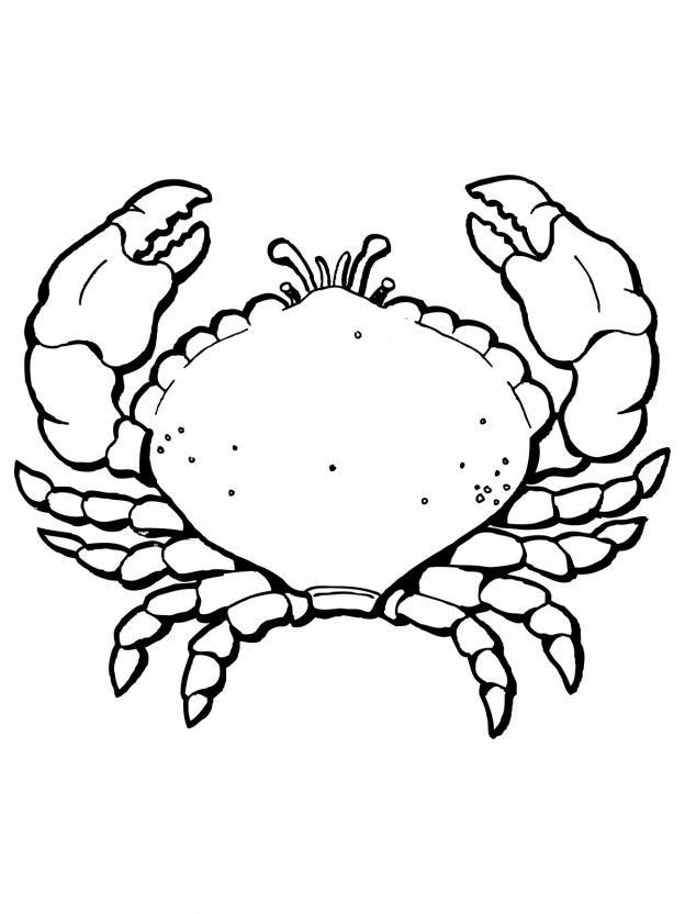blue crabs colouring pages page 3