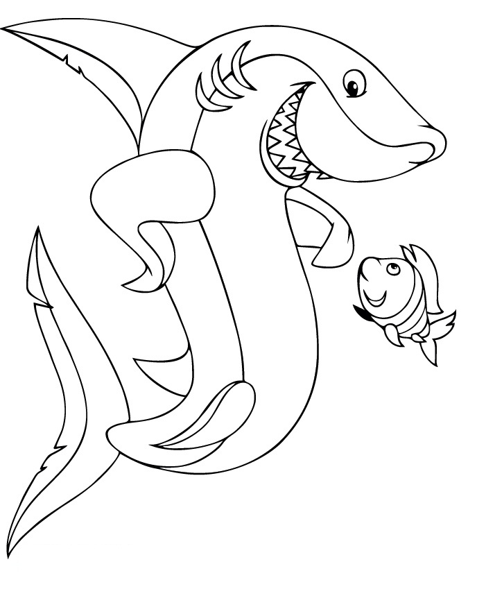 great white sharks colouring pages